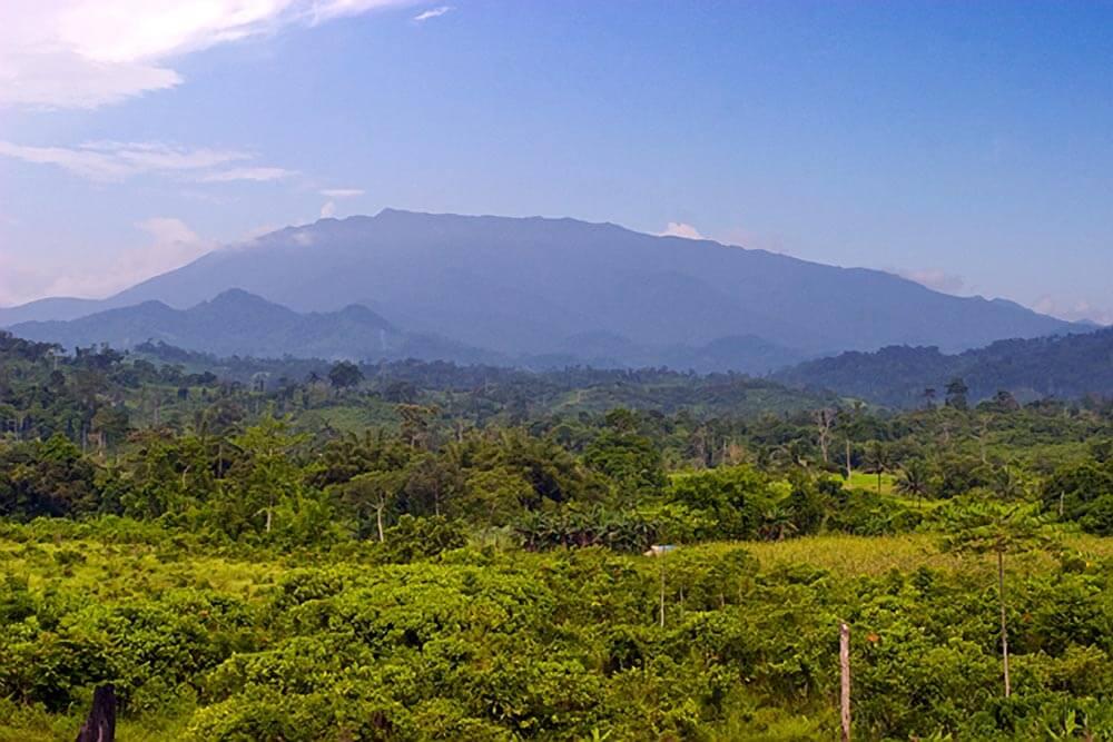 Mount Mantalingajan, Southern Palawan