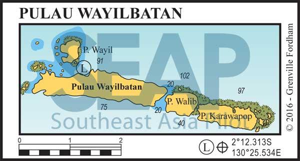Pulau Wayilbatan, Raja Ampat
