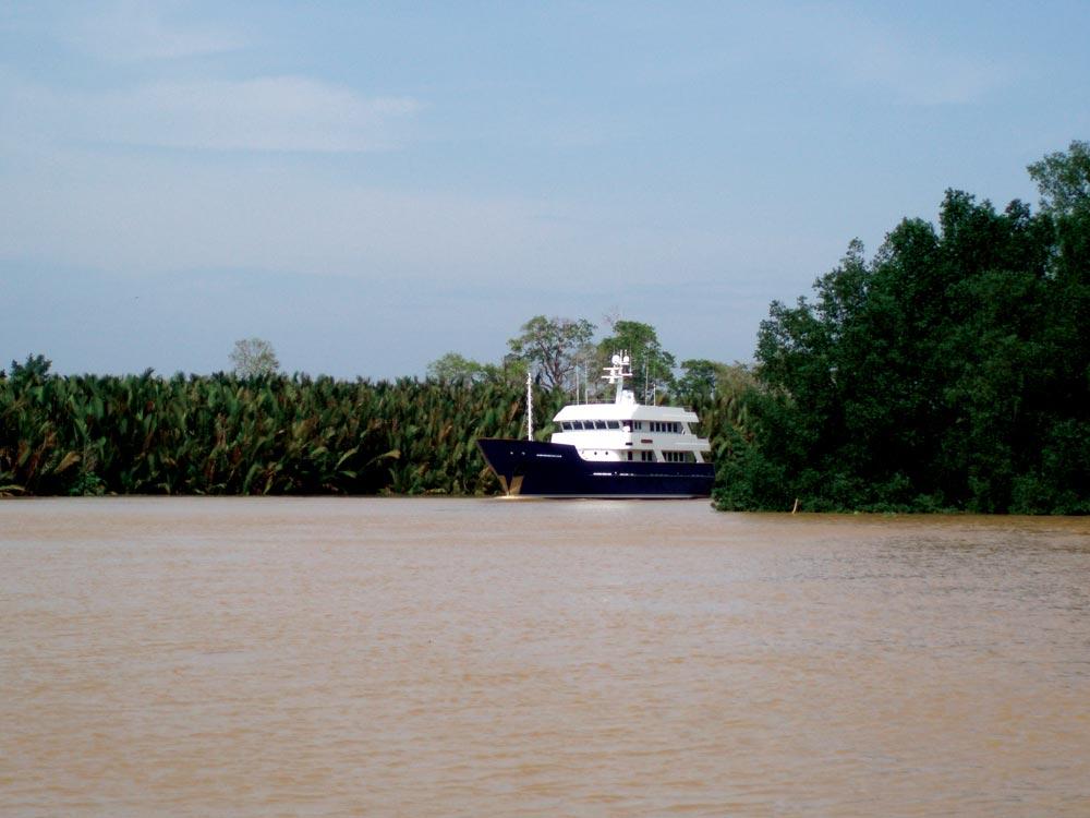 Superyacht on the Kinabatangan River